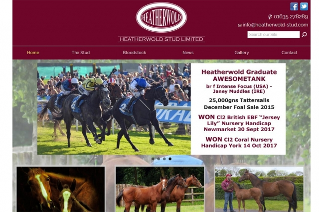 screenshot of heatherwold stud web site, developed by dovedale deisgn
