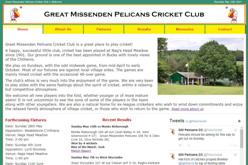 screenshot of great missenden pelicans web site, developed by dovedale deisgn